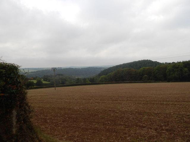 Field West of Sheepridge Farm