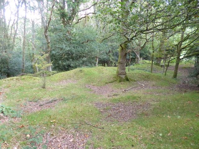 Woodgreen, former gravel pit