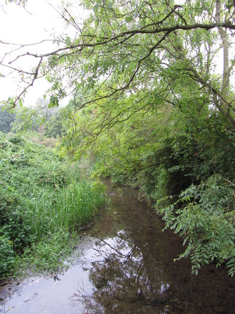 River Thames in the Cotswold Water Parks