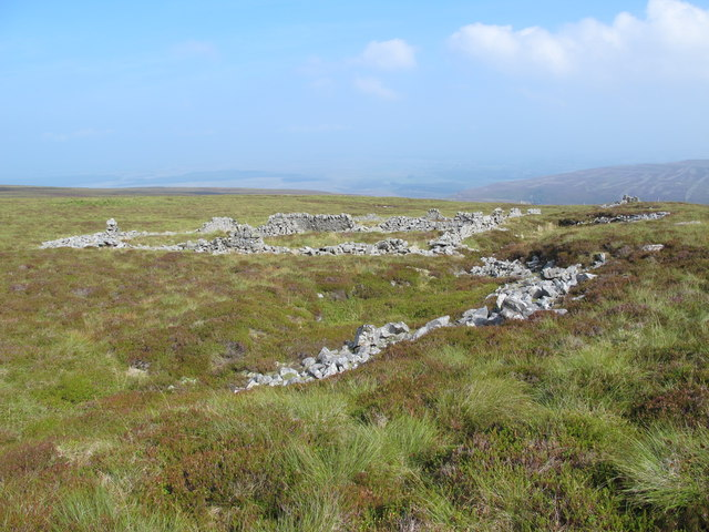 Sheepfold on the northeast slopes of Cold Fell