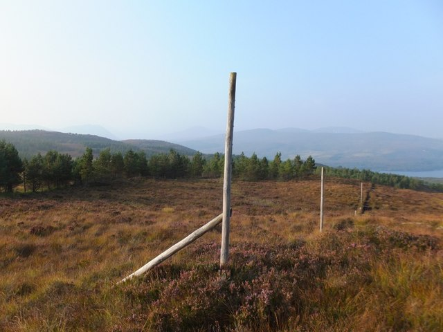 Old deer fence to south of  Loch Luichart