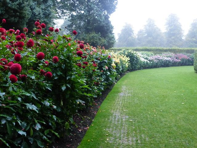 Dahlia garden, Anglesey Abbey, Lode