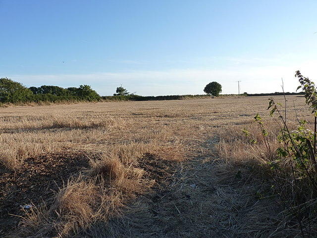 Field of stubble near Creampots Farm