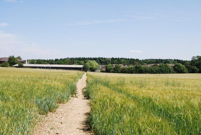 Field outside West Kingsdown