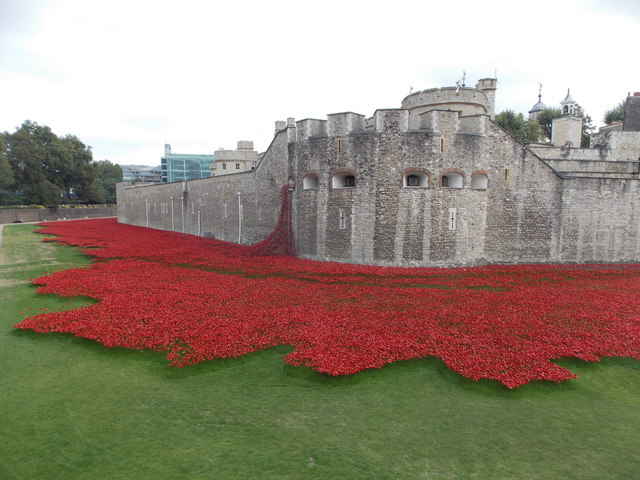 London: sea of poppies surrounding the Tower of London
