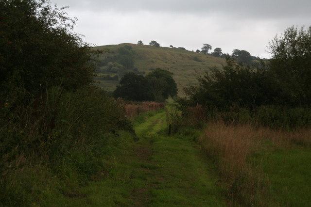 Bridleway to Pelham Road