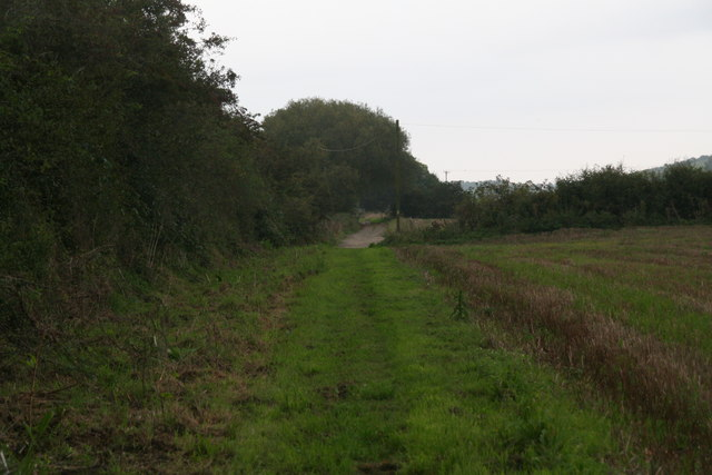 September evening walk along the bridleway from Pelham Road to Nettleton