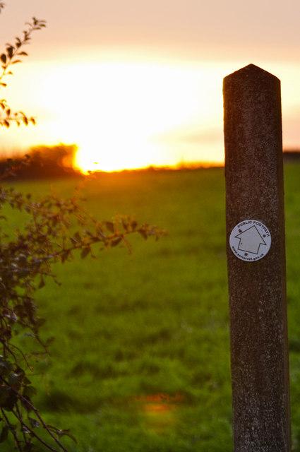 West Somerset : Grassy Field & Footpath