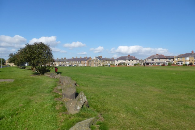 Common land in Amble