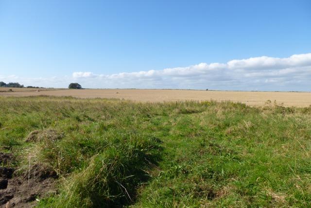 Farmland off Amble Links