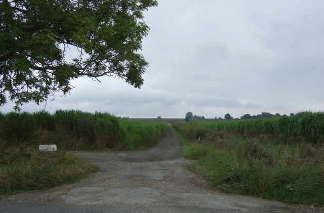 Farm track off North Moor Lane