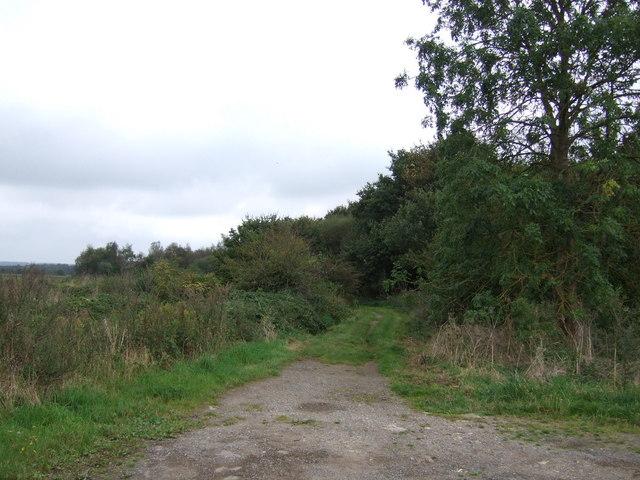 Sand Lane (track)
