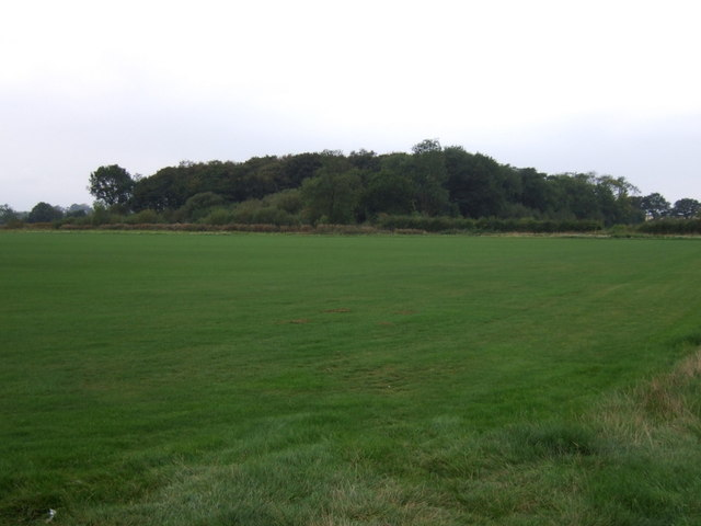 Farmland towards Black Walk Plantation