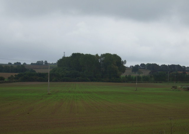 Farmland and powerlines