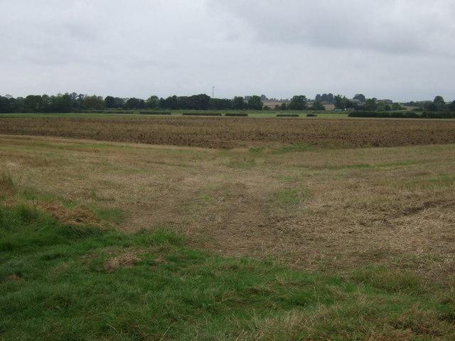 Farmland off Kirton Road