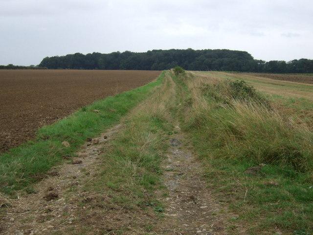 Farm track towards Fox Covert