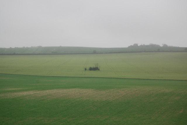 Prairie like landscape
