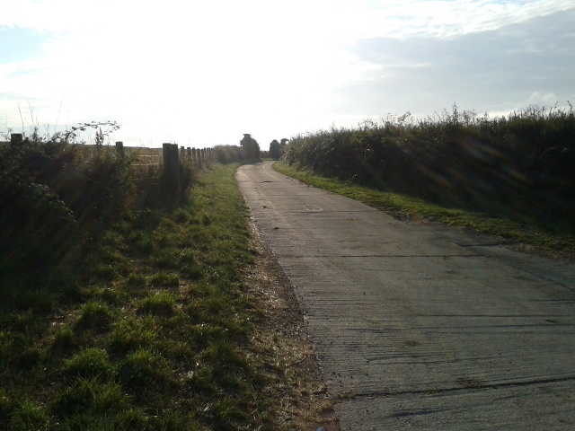 Early morning on the farm track to Tredower