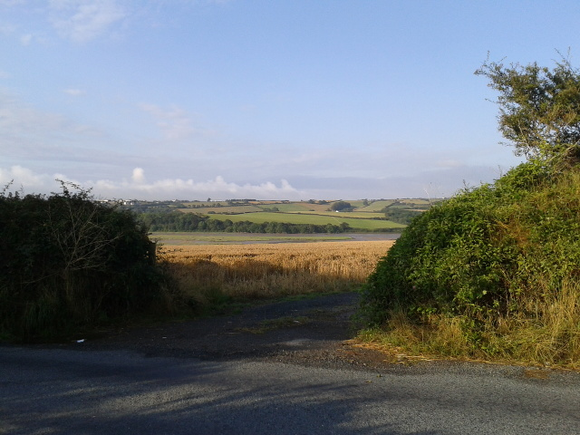 Looking across the B3314 towards the Camel river valley