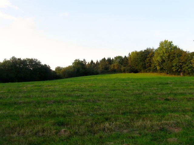 Further Four Acres
