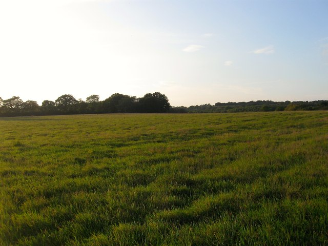 Middle Field/Five Acres/The Ell Field
