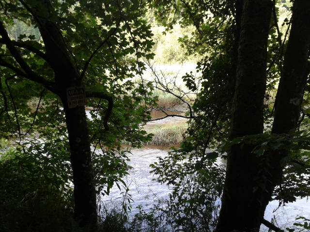The Camel river, seen from the Camel Trail