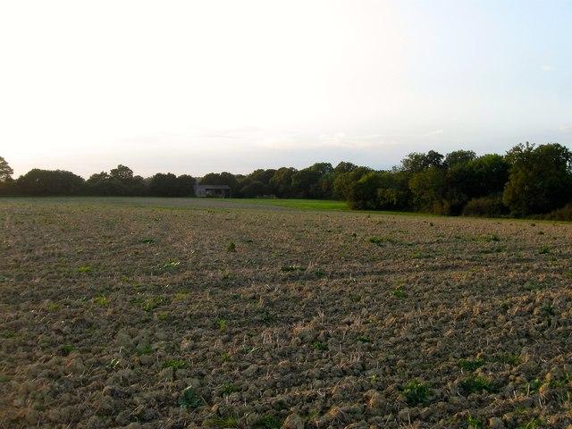 Long Seven Acres/Bond Field