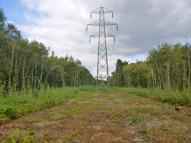 Power line MA through woodland