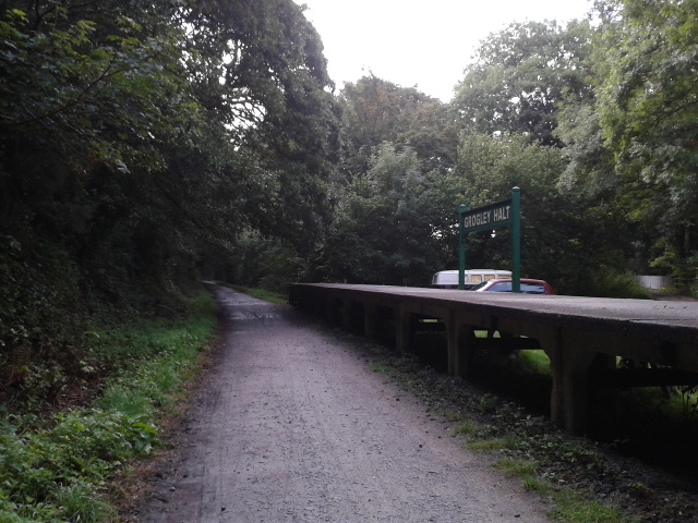 Grogley Halt platform on the Camel Trail