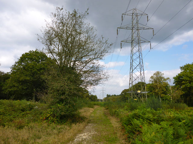 Power line MA through woodland