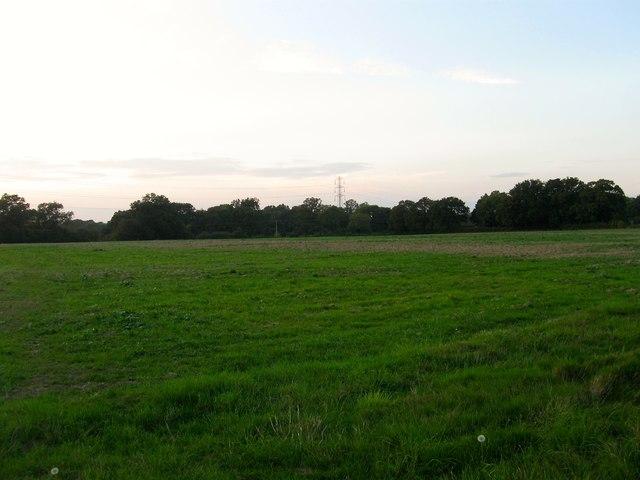Crosspost Field