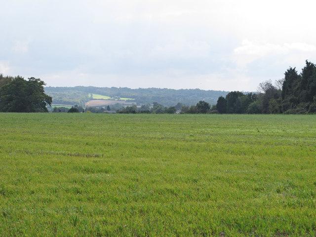 Arable land, Nounsley