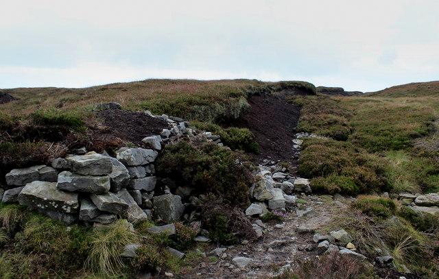 Stean Moor
