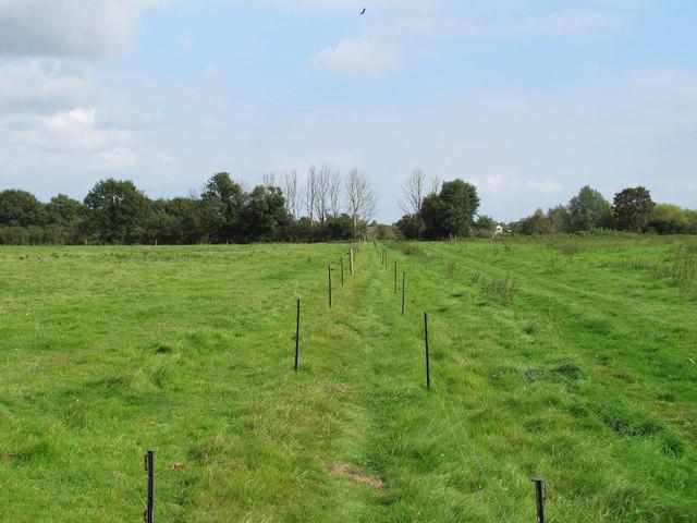 Electric fence along public footpath, Nounsley