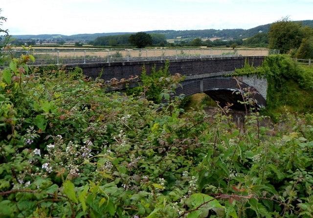 Brambly view of a railway bridge, Flax Bourton
