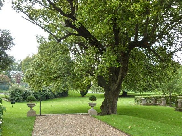 Gardens at Firle Place