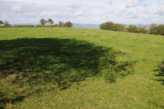 Field near Pant Yr Onnen