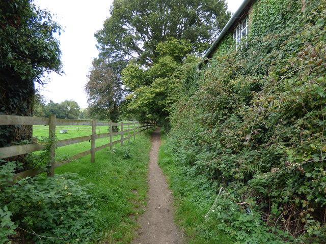 Tilford:  Bridleway
