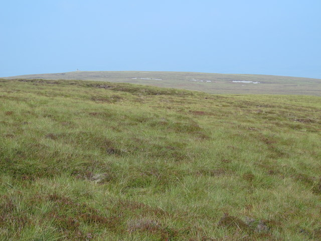 The northern slopes of Cold Fell