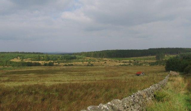 The Pennine way near Ladyhill farm.
