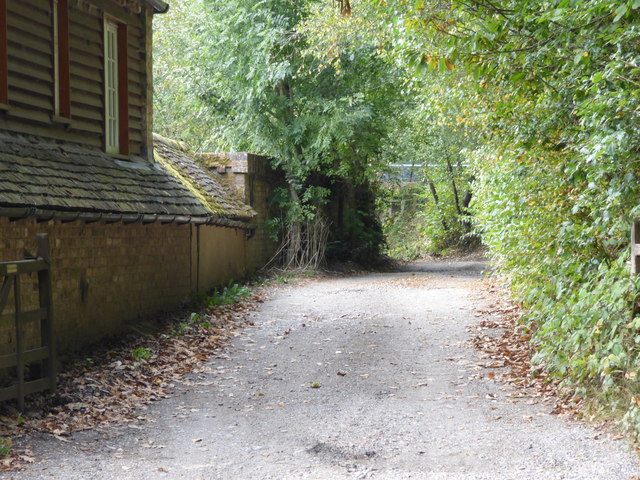 Tilford:  Lane leading to Herons Wey