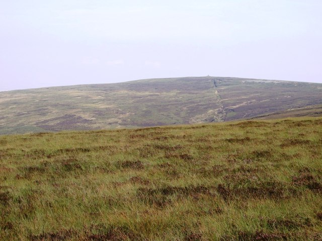 The western slopes of Cold Fell