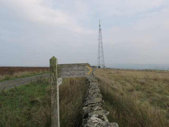 Pennine way on Ealingham rigg.
