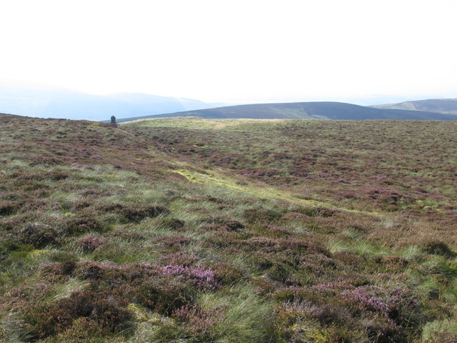 Moorland between Brown Fell and Cold Fell