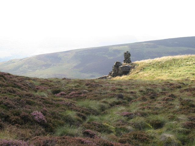 Currick on Brown Fell above Gairs