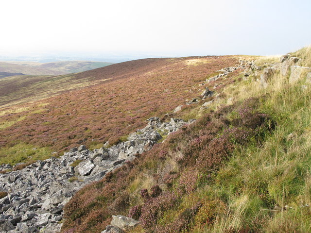 Rock outcrops on Brown Fell