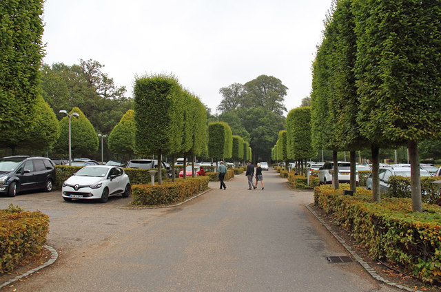 The Grove, Watford - Car park
