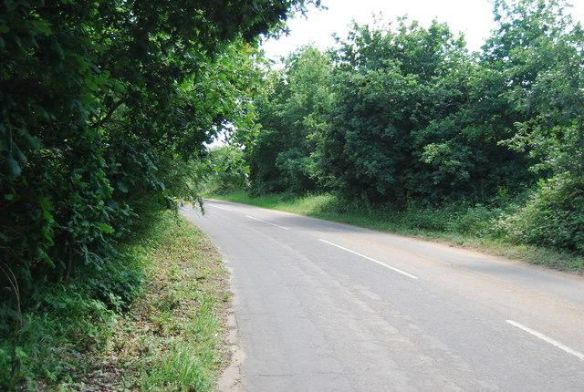 Lane by Alton Water