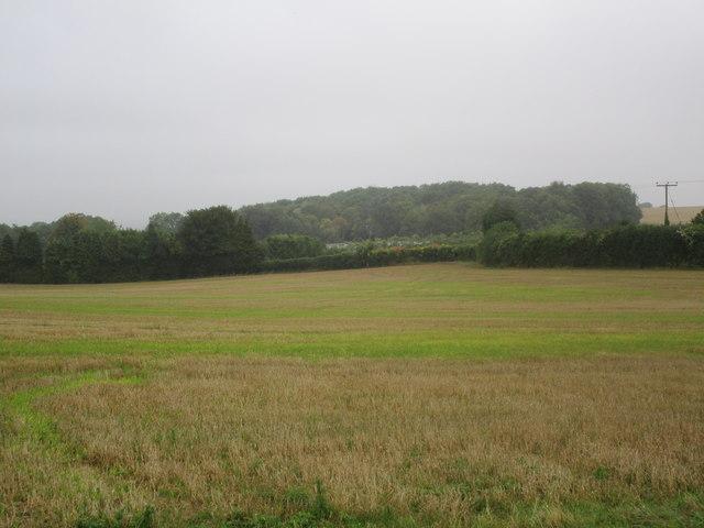 View from Fair Lane towards Winnall Down Farm