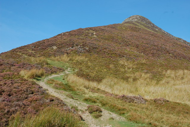 Path to Causey Pike